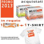 MG.K Vis Promo 2013