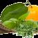 Campioni gratuiti Mediterranean Natural Extracts