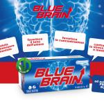 Bluebrain 2016