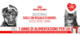 Royal Canin: Natale D'Amore
