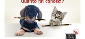 Purina PetCare: Vinci notebook HP