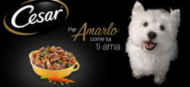 Diventare tester: Cesar (alimenti per cani)