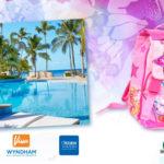 Winx Caraibi